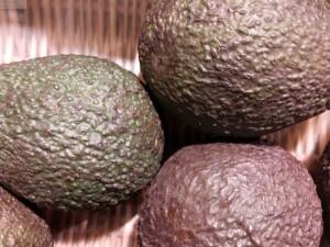 Avocados für den Obstteller